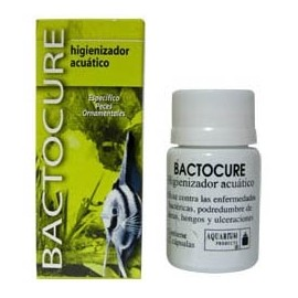Bactocure 12 capsulas