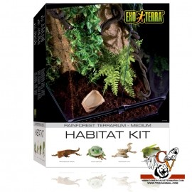 Terrario kit Selva pequeño (40L)