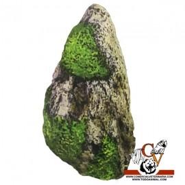 Roca con ventosa pequeña