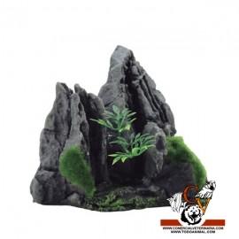 MAGIC ROCKS MOUNTAIN C1