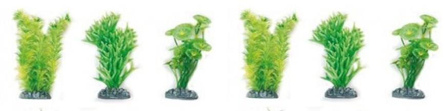 Plantas (NO VIVAS)